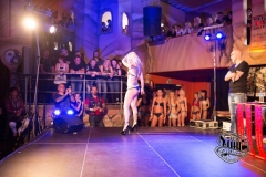 Tattooshow_2014-8468