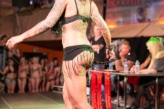 Tattooshow_2014-8489