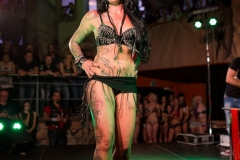 Tattooshow_2014-8495